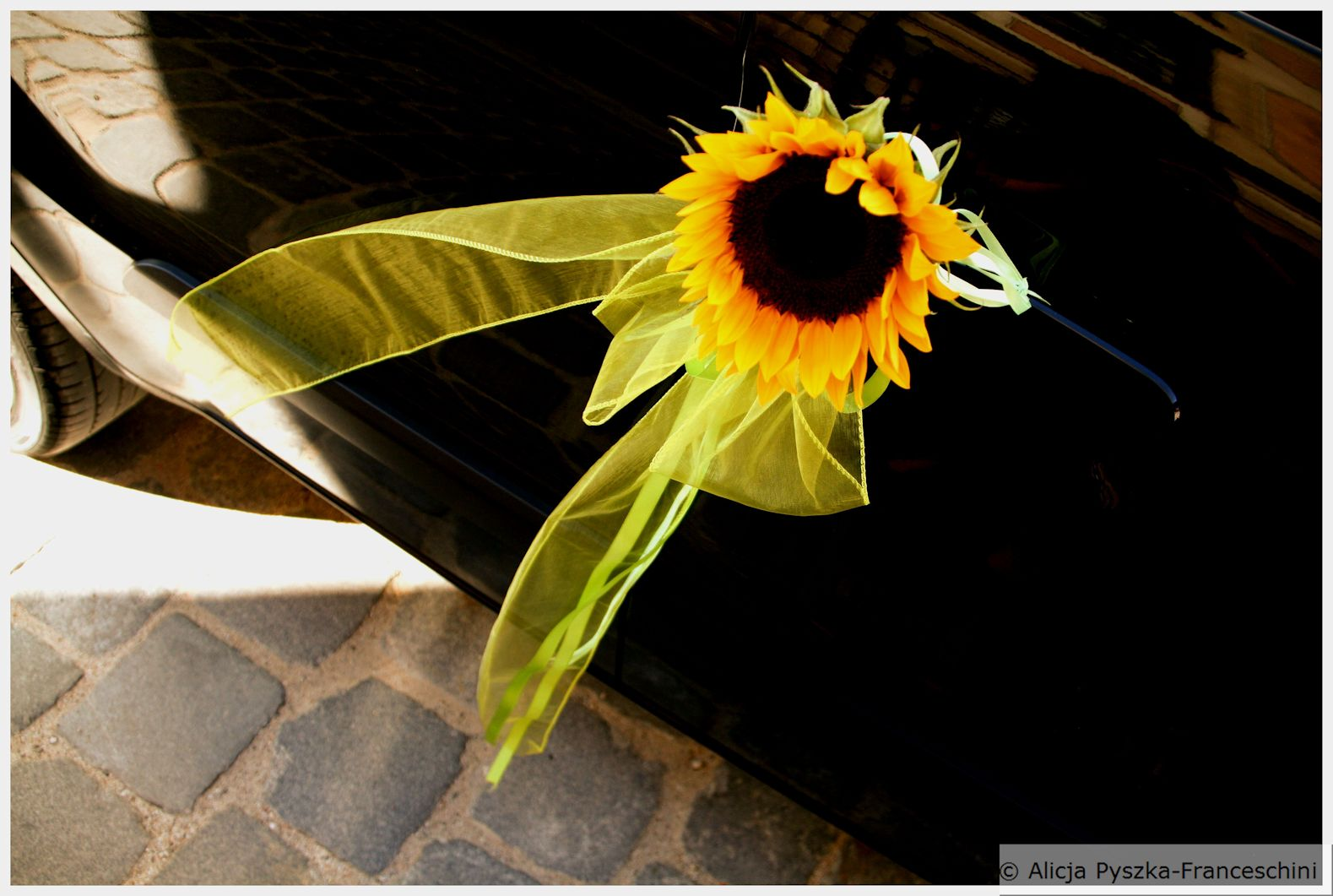 Wedding Sunflower Car Decoration Postcards Without Stamps