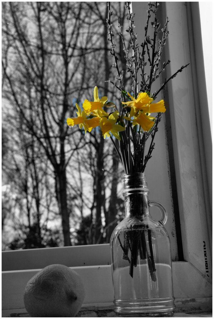 wiosna