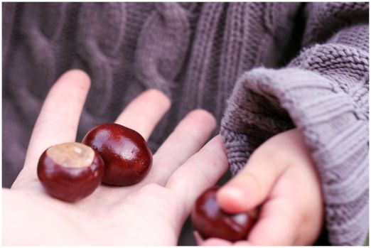 IMG_4142conkers
