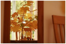 Autumn at home