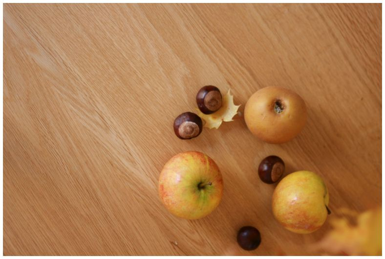 autumn apples and conkers