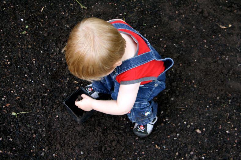 soil lover 2