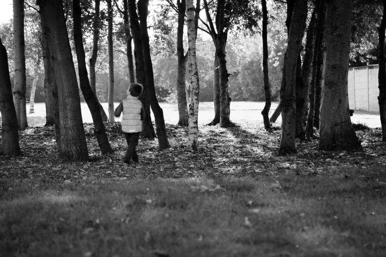 park autumnbw (1 of 1)